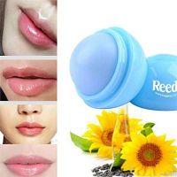 Buy Custom Lip Balms for Boosting Brand Awareness