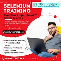 The iiT Workforce has introduced a selenium training online course.