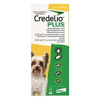 """New Arrival Alert! """"Credelio Plus For Dog"""" at 10% OFF Today Only!"""