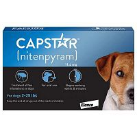 Treat your Pup at Home, Shop Capstar For Dogs