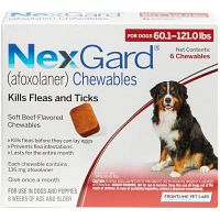 Nexgard for Dogs: Beef-flavored Soft Chewable