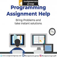 Programming homework help in USA | assignmentsgroup