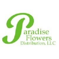 Paradise Flowers- freshness and quality