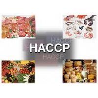 Hazard Analysis & Critical Control Points ( HACCP )  in Dubai