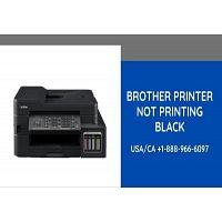 Brother Printer Not Printing Black - Solve This Error