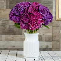New Jersey Flower Delivery at your doorstep - Eden Farm Fresh