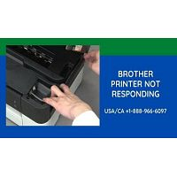 Brother Printer Not Responding   How to Solve This Error