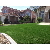 Artificial grass installers in my area Palm Island